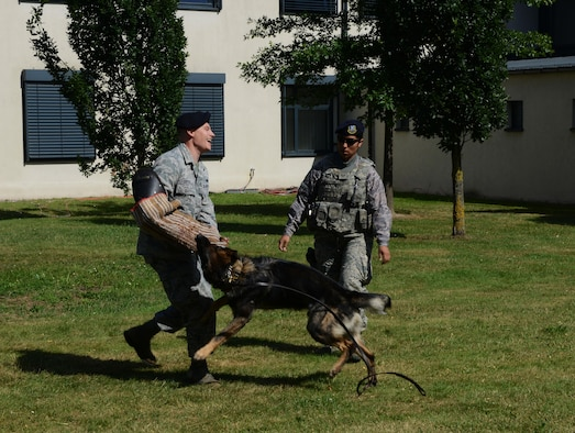 Staff Sgt. Ricky Leitzel, left, 86th Security Forces military working dog trainer, and Staff Sgt. Jessica Santana, 86th SFS MWD handler, conduct a K-9 demonstration Aug. 5, 2016, at Ramstein Air Base, Germany. The demonstration was part of a block party hosted by the Ramstein Enlisted Club for Department of Defense cardholders and their families. (U.S. Air Force photo/ Airman 1st Class Joshua Magbanua)