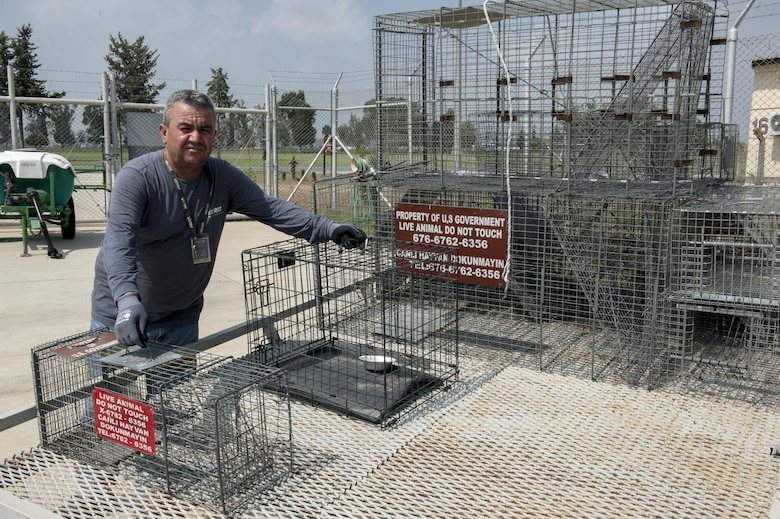 Mehmet Turkmen 39th Civil Engineer Squadron pest management animal handler stands next to live capture traps on the back of a trailer in the pest management yard Aug. 11, 2016, at Incirlik Air Base, Turkey. Members of the pest management flight are responsible for the safe capture and removal of problematic wild animals from the installation. (U.S. Air Force photo by Staff Sgt. Jack Sanders)