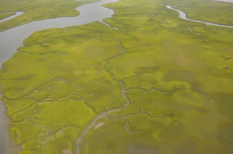 An aerial overview of green, water-filled saltwater marshes captured during Undersecretary of the Army Patrick Murphy's visit to the Savannah District Aug. 11, 2016.