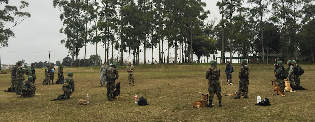 Uruguayan military members train with their military working dogs during a nine day training event facilitated by 12th Air Force (Air Forces Southern) and the U.S. Embassy in Montevideo, Uruguay, Aug. 4, 2016. (Courtesy Photo)