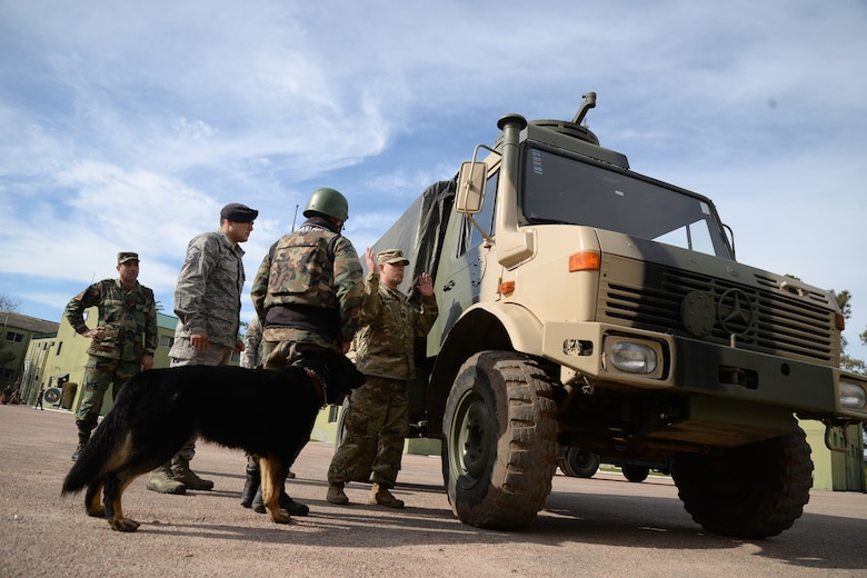 Uruguayan military members train with their military working dogs during a nine day training event facilitated by 12th Air Force (Air Forces Southern) and the U.S. Embassy in Montevideo, Uruguay, Aug. 11, 2016. (Courtesy Photo)