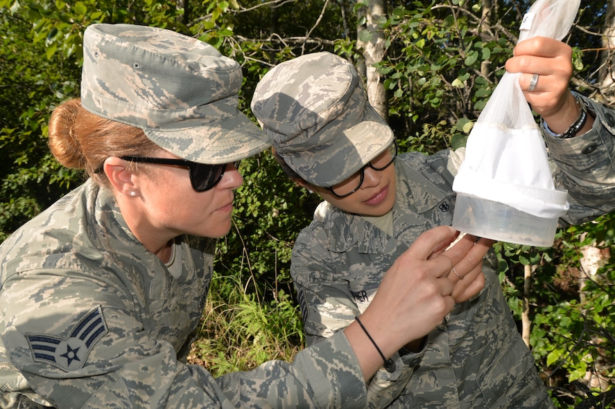 Tech Sgt. Yolanda Garner and Senior Airman Stacy Alexander, both with the 134th Medical Group Public Health, inspect the mosquitos that were trapped after placing the traps the day prior during a temporary duty assignment at Joint Base Elmendorf- Richardson July 10-19. Mosquitos are trapped and tested for diseases weekly during the summer months due to the large numbers of them.  (U.S. Air National Guard photo by: Senior Airman Melissa Dearstone)