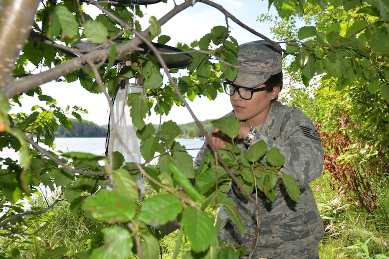 Tech Sgt. Yolanda Garner with the 134th Medical Group Public Health helps hang a mosquito trap at Joint Base Elmendorf- Richardson, Alaska during a temporary duty assignment July 10-19. She helped place the traps in eight different locations around the base, all while learning the procedures on how the local public health team tests the mosquito population there. (U.S. Air National Guard photo by Senior Airman Melissa Dearstone)