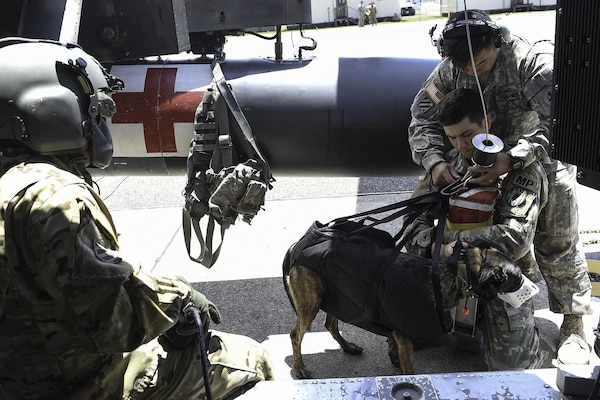 U.S. Army Spc. Harley Reno, a military working dog handler assigned to Joint Task Force-Bravo's Joint Security Forces, and his MWD, Kyra, are secured to a hoist during training at Soto Cano Air Base, Honduras, August 15, 2016. The MWD handlers and their dogs first were attached to the hoist while the aircraft was off and on the ground, before moving out to the field for the live portion of training.