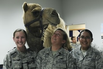 Security Forces Airmen meet Hump-free the camel and pose for a photo Aug. 17, 2016, at Beale Air Force Base, California. Hump-free visited the base for Hump Day, a resiliency day event hosted by the Beale Chapel Corps. (U.S. Air Force photo by Senior Airman Tara R. Abrahams)