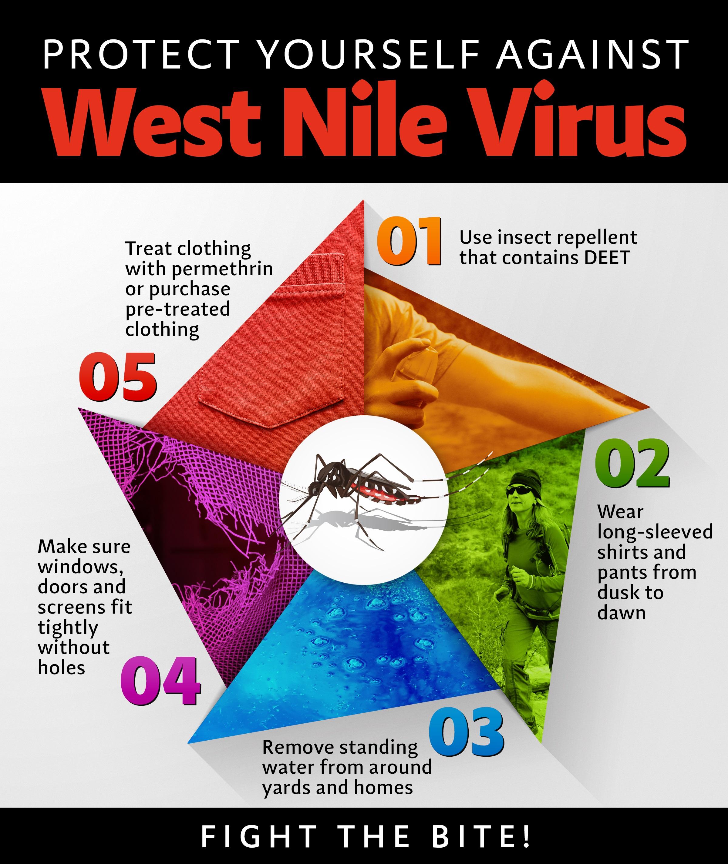 Dissertation west nile virus