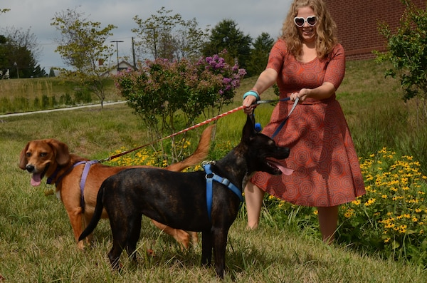 Katie Walsh, a Content Management Course instructor at the Defense Information School on Fort Meade, keeps the leashes straight on her adopted dogs, Ginger and Ren, Aug. 16, 2016, at the school. Walsh and her husband adopted Ren in December, while Ginger, originally a foster dog, officially joined the family in August.