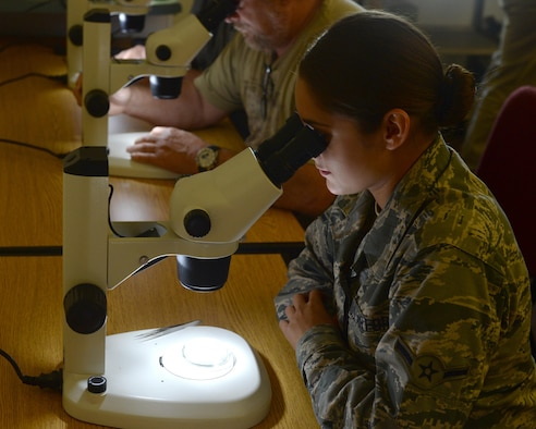 U.S. Air Force Airman Amber Waugh, 325th Public Health Flight public health technician, observes mosquito specimens through a microscope at the Bland conference room at Florida State University in Panama City Fla., Aug. 22, 2016. The Public Health Flight from Tyndall attended the Zika Caucus to share knowledge on methods of combating Zika and the carriers of the virus. (U.S. Air Force photo by Airman 1st Class Cody R. Miller)