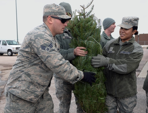 Airman 1st Class Holly Haupu, a lodging apprentice assigned to the 28th Force Support Squadron, passes a Christmas tree down a line during Ellsworth's ninth annual Trees for Troops event outside the Outdoor Recreation Center at Ellsworth Air Force Base, S.D., Dec. 2, 2016. This national program started with a simple idea of tree farmers wanting to find a way to give back to our nation's military service members. (U.S. Air Force photo by Airman 1st Class Denise M. Jenson)
