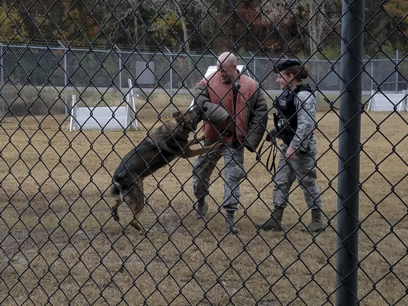 Staff Sgt. Adam Dye, 628th Security Forces Squadron military working dog handler, center, and Staff Sgt. Angela Lowe, right, demonstrate a military working dog training exercise during a  spouse tour at Joint Base Charleston, S.C., Dec. 5, 2016. Spouses had the opportunity to tour various mission sets across the Air Base.
