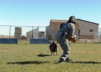 Tech. Sgt. Rachel Calloway, 27th Special Operations Security Forces Squadron Military Working Dog kennel master, decoys during bite training for MWD Fulda, Nov. 15, 2016, at the MWD compound at Cannon Air Force Base, N.M. Air Force MWD handlers are responsible for protecting and defending their installation with their canine counterparts. (U.S. Air Force photo by Staff Sgt. Whitney Amstutz/released)