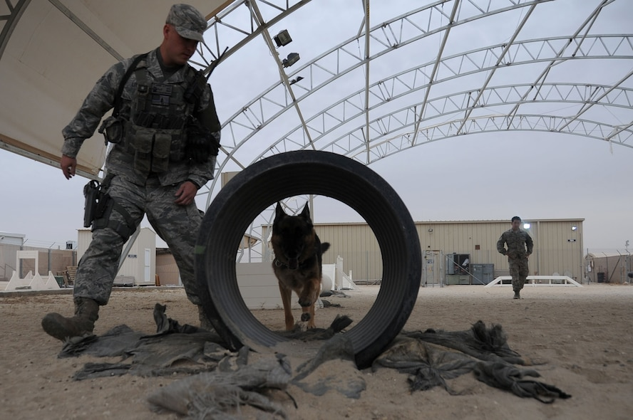 This week's Rock Solid Warrior is Senior Airman Paul Little, a 386th Expeditionary Security Forces Squadron military working dog handler. Little is deployed from the 27th Special Operations Wing at Cannon Air Force Base N.M. (U.S. Air Force photo/Senior Airman Andrew Park)