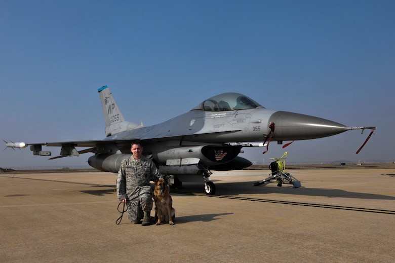 Staff Sgt. Bryan Tarantella, 8th Security Forces Squadron military working dog handler, kneels in front of an F-16 fighting falcon jet next to Stella, 8th SFS military working dog, on the flightline at Kunsan Air Base, Republic of Korea, Nov. 11, 2016. Tarantella has been a handler for 11 years and is getting ready to move to Joint Base San Antonio- Lackland. Stella has come to the end of her military service and will be retiring. Tarantella plans to adopt Stella after her retirement. (U.S. Air Force photo by Senior Airman Colville McFee/Released)