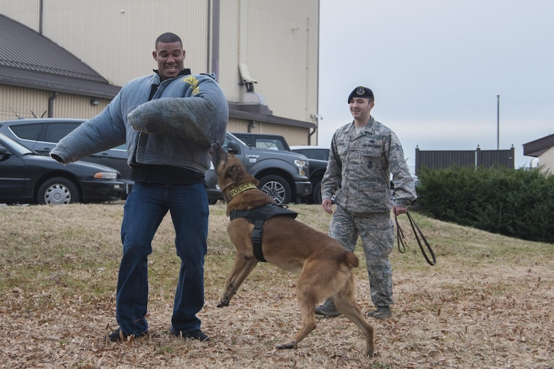 Jason Jordan, World Wrestling Entertainment Superstar, participates in a military working dog demonstration with Staff Sgt. Benny Dorman, 11th Security Support Squadron military working dog handler, and his dog, Marco, at Joint Base Andrews, Md., Dec. 13, 2016. As part of a tour of JBA, the WWE Superstars viewed and interacted with the security forces MWD section, combat gear, weapons systems and other aspects of the unit. (U.S. Air Force photo by Senior Airman Jordyn Fetter)