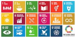 UN Post-2015 Sustainable Development Goals.