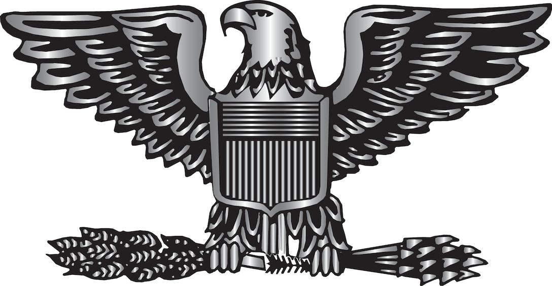 eagle rank graphic