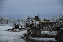 A junior musher from the Junior Mushers Association of Interior Alaska, comforts their dogs before a race Dec. 17, 2016, at the 338 pond near Eielson Air Force Base, Alaska. The junior musher waited for their first race of the season. (U.S. Air Force photo by Airman Isaac Johnson)