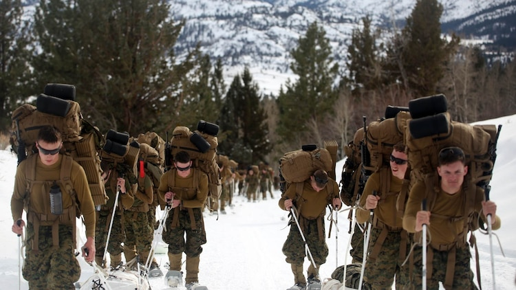 Marines with Combat Logistics Battalion 252 trek up the steep mountains of Bridgeport, California, during Mountain Exercise 1-16, a cold weather training exercise, on Jan. 11, 2016. The training is a prerequisite for a large, multi-national exercise called Cold Response 16 that will take place in Norway, March of this year. Cold Response will challenge 12 NATO allies' and partners' abilities to work together and respond in the case of a crisis.