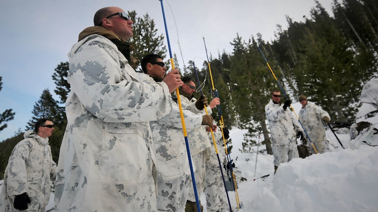 Marines with Company A, 2nd Assault Amphibian Battalion, use avalanche probes in search for a simulated casualty during an avalanche scenario at the Mountain Warfare Training Center in Bridgeport, California, Jan. 20, 2016. Marines across II Marine Expeditionary Force and 2nd Marine Expeditionary Brigade took part in the scenario as part of Mountain Exercise 1-16 in preparation for Exercise Cold Response 16.1 in Norway this March. The exercise will feature military training including maritime, land and air operations that underscore NATO's ability to defend against any threat in any environment.