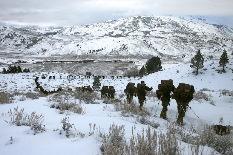 Marines hike up a steep incline on the Sierra Mountains during cold weather training at Marine Corps Mountain Warfare Training Center, Calif., Jan. 21, 2016. The cold weather training done in the Sierra Mountains is a warm-up to Exercise Cold Response 1-16 in Norway. Nearly 80 Marines with 2nd LAAD Bn. participated in the two-weeklong exercise that taught basic mobility in snow, defensive and offensive tactics as well as basic cold weather and high altitude conditions training.