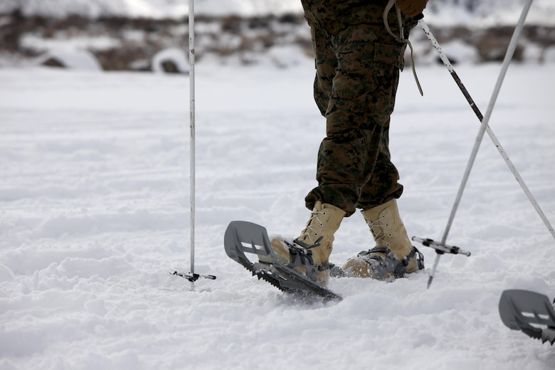 A Marine uses snowshoes for the first time during cold weather training at Marine Corps Mountain Warfare Training Center, Calif., Jan. 21, 2016. Snowshoes are implemented in the training for Marines to gain better traction in deep, loosely packed snow. The cold weather training done in the Sierra Mountains is a warm-up to Exercise Cold Response 1-16 in Norway. Nearly 80 Marines with 2nd LAAD Bn. participated in the two-weeklong exercise that taught basic mobility in snow, defensive and offensive tactics as well as basic cold weather and high altitude conditions training.