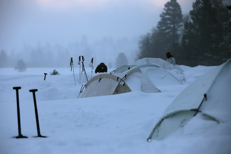 Marines inspect the areas around their tents during cold weather training at Marine Corps Mountain Warfare Training Center, Calif., Jan. 21, 2016. The cold weather training done in the Sierra Mountains is a warm-up to Exercise Cold Response 1-16 in Norway. Nearly 80 Marines with 2nd LAAD Bn. participated in the two-weeklong exercise that taught basic mobility in snow, defensive and offensive tactics as well as basic cold weather and high altitude conditions training.
