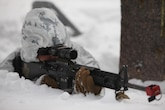 Lance Cpl. Jason M. Jones provides security during a simulated ambush during cold weather training at Marine Corps Mountain Warfare Training Center, California, Jan. 21, 2016. The cold weather training done in the Sierra Mountains is a warm-up to Exercise Cold Response 1-16 in Norway. Nearly 80 Marines with 2nd LAAD Bn. participated in the two-weeklong exercise that taught basic mobility in snow, defensive and offensive tactics as well as basic cold weather and high altitude conditions training. Jones is a low altitude air defense gunner with 2nd Low Altitude Air Defense Battalion.