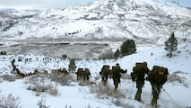 Marines hike up a steep incline on the Sierra Mountains during cold weather training at Marine Corps Mountain Warfare Training Center, California, Jan. 21, 2016. The cold weather training done in the Sierra Mountains is a warm-up to Exercise Cold Response 1-16 in Norway. Nearly 80 Marines with 2nd LAAD Bn. participated in the two-weeklong exercise that taught basic mobility in snow, defensive and offensive tactics as well as basic cold weather and high altitude conditions training.