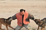 Air Force Tech. Sgt. Max Soto demonstrates how two working dogs are capable of taking down a potential suspect at Al Udeid Air Base, Qatar, Jan. 27, 2016. Soto is a kennel master with the 379th Expeditionary Security Forces Squadron. U.S. Air Force photo by Tech. Sgt. Terrica Y. Jones
