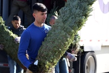 Cpl. Keith Yennie unloads a tree from the back of a truck during the 10th annual trees for troops event at Marine Corps Air Station Cherry Point, N.C., Dec. 8, 2015. More than 400 free trees were distributed to service members and their families as a symbol of brotherhood and appreciation from the community during the holiday season. Yennie is an engineering equipment electric systems technician Marine Wing Communication Squadron 28 (U.S. Marine Corps photo by Cpl. N.W. Huertas/Released)