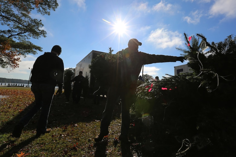 Marines stack trees for distribution during the 10th annual trees for troops event at Marine Corps Air Station Cherry Point, N.C., Dec. 8, 2015. More than 400 free trees were distributed to service members and their families as a symbol of brotherhood and appreciation from the community during the holiday season. (U.S. Marine Corps photo by Cpl. N.W. Huertas/Released)