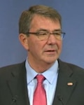 Defense Secretary Ash Carter