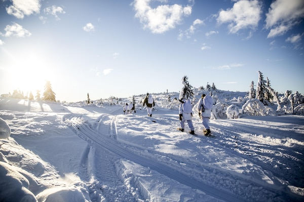 Allied soldiers cross-country ski under winter conditions with Norwegian equipment, Jan. 19, 2016. Norwegian Army photo by Olav Standal Tangen