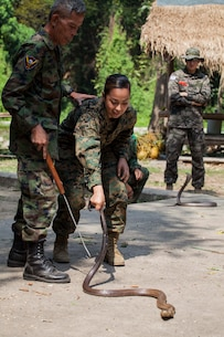 U.S. Marine Corps Cpl. Jessica Cortez with 31st Marine Expeditionary Unit, practices how to handle a cobra during jungle survival training led by the Royal Thai Reconnaissance Marines during Cobra Gold 16, Sattahip, Thailand, Feb. 8, 2016. Cobra Gold, in its 35th iteration, is designed to advance regional security and ensure effective responses to regional security crises by bringing together a robust combined task force from partner nations sharing common goals and security commitments in the Indo-Asia-Pacific.