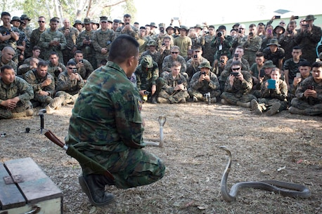 U.S. Marines assigned to the 31st Marine Expeditionary Unit, along with Thai Korean Marines, watch Royal Thai Marine Chief Petty Officer 1st Class Pairog Prasansai, assigned to Recon Battalion, demonstrate how cobras are attracted to heat and motion in jungle survival training during Cobra Gold 2016 on Ban Chan Krem, Thailand, Feb. 13, 2016. CG16 provides a joint, combined task force venue for all participating nations to advance interoperability and increase capacity to conduct combined task force events.
