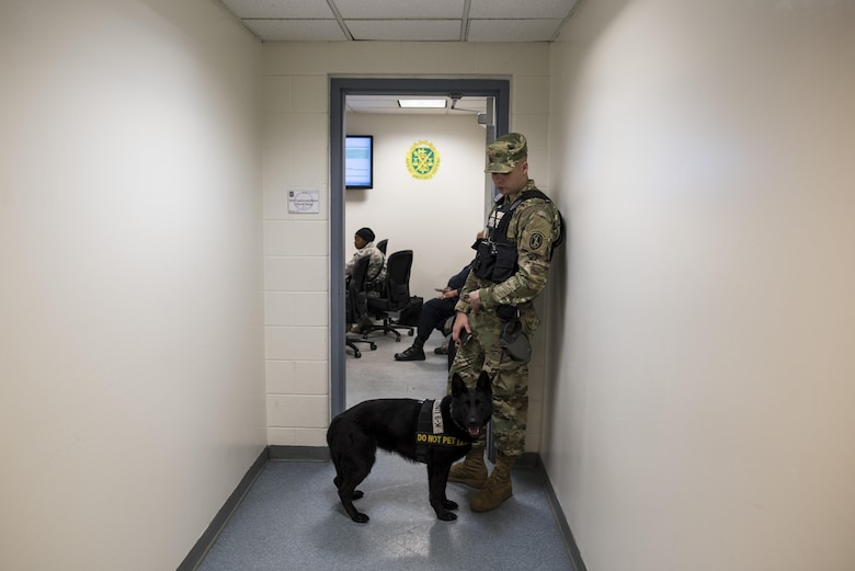 Pfc. Michael Fletcher, military police Soldier with the 289th MP Company, waits outside of a morning meeting with Cessy, a military K9 police dog, at Joint Base Myer-Henderson Hall, Va., Feb. 17. The 289th MP Co., belonging to the 3rd U.S. Infantry Regiment (The Old Guard), is currently running a partnership pilot program with the U.S. Army Reserve's 200th MP Command, which began in early February, placing Army Reserve Soldiers on active duty orders for three weeks while working at Joint Base Myer-Henderson Hall, Fort Lesley J. McNair and the Arlington National Cemetery. Army Reserve Soldiers will also support the Military District of Washington with additional duty days throughout the year. (U.S. Army photo by Master Sgt. Michel Sauret)