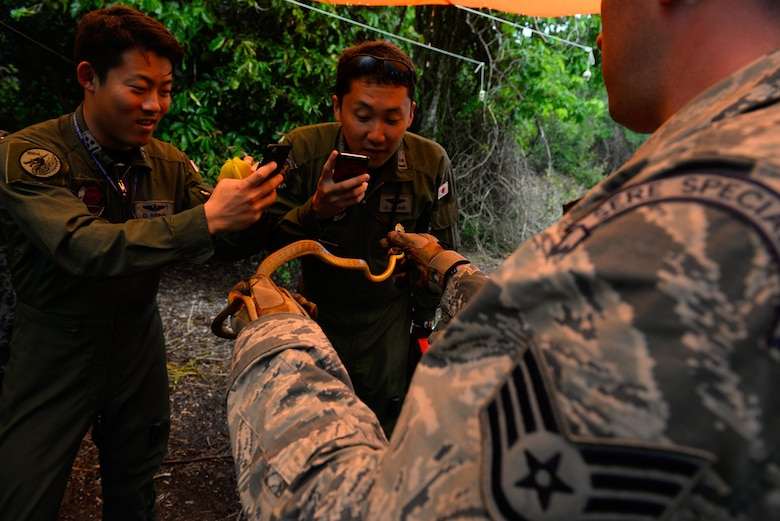Staff Sgt. Levi Wood, survival, evasion, resistance and escape instructor assigned to the 353rd Combat Training Squadron, right, shows a captured Brown Tree snake to Japan Air Self-Defense Force airmen during a jungle survival workshop Feb. 16, 2016, at Andersen Air Force Base, Guam. Exercise Cope North 16 includes 22 total flying units and nearly 3,000 personnel from six countries and continues the growth of strong, interoperable and beneficial relationships within the Indo-Asia-Pacific region through integration of airborne and land-based command and control assets. (U.S. Air Force photo by Staff Sgt. Alexander W. Riedel/Released)