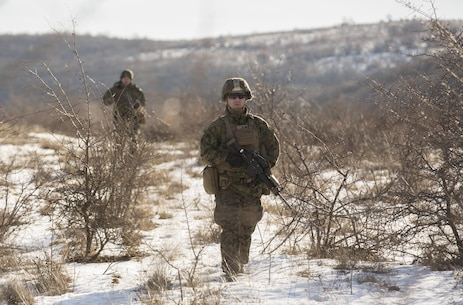 Marines with the Combined Arms Company, Black Sea Rotational Force and Romanian Forces conduct patrols during Platinum Lion 16-2 at Novo Selo Training Area, Bulgaria, Jan. 8, 2016. Exercise Platinum Lion provides combined training with NATO Allies and partners, demonstrating our commitment to promoting a peaceful and stable Europe through theatre security cooperation engagements. (U.S. Marine Corps Photo by Cpl. Justin T. Updegraff/ Released)