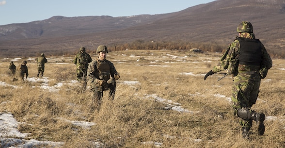 Marines with the Combined Arms Company, Black Sea Rotational Force and Romanian Forces rehearse an Anti-Personnel Obstacle Breaching System breach during Platinum Lion 16-2 at Novo Selo Training Area, Bulgaria, Jan. 8, 2016. An APOBS breach is used to clear a foot path through a wire, or mine field, obstacle for personnel. Exercise Platinum Lion provides combined training with NATO Allies and partners, demonstrating our commitment to promoting a peaceful and stable Europe through theatre security cooperation engagements. (U.S. Marine Corps Photo by Cpl. Justin T. Updegraff/ Released)