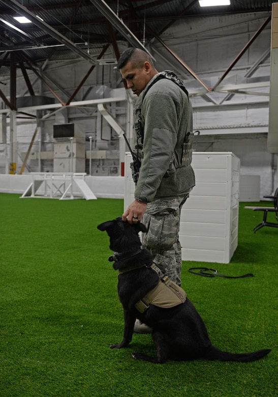 Staff Sgt. Michael Gwin, a 28th Security Forces Squadron military working dog handler, pets Sjors during a training session at the new indoor MWD training facility at Ellsworth Air Force Base, S.D., Dec. 30, 2015. The new building allows year-round training, regardless of weather conditions. (U.S. Air Force photo/Airman 1st Class James L. Miller)