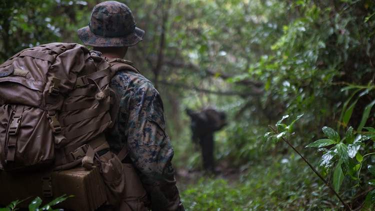 A Marine watches and waits for a signal from the point man as they search for the enemy during a three-day field training exercise Jan. 7, 2016, on Camp Hansen in Okinawa, Japan. The training tested the ability of Marines with Alpha Company, Battalion Landing Team 1st Battalion, 5th Marines, 31st Marine Expeditionary Unit, to locate, close and destroy the enemy while navigating through jungle terrain.