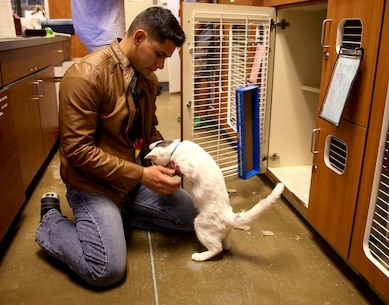 Volunteers with the Single Marine Program, stationed at Marine Corps Air Station Yuma, Ariz., walk and care for animals at the Humane Society of Yuma, Wednesday, Dec. 16, 2015.