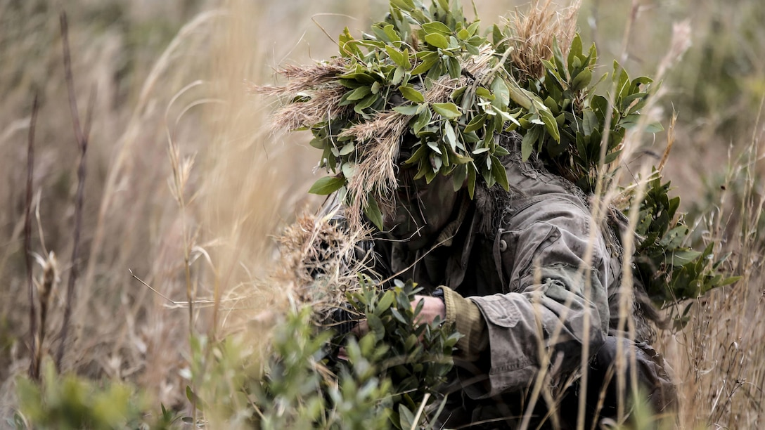 A Marine student undergoing the 2nd Marine Division Combat Skills Center's Pre-Scout Sniper Course prepares to move during a stalking exercise at Marine Corps Base Camp Lejeune, North Carolina, Jan. 22, 2016. The exercise required students to traverse approximately 1,000 meters of high grass and fire on a target, all without being detected.
