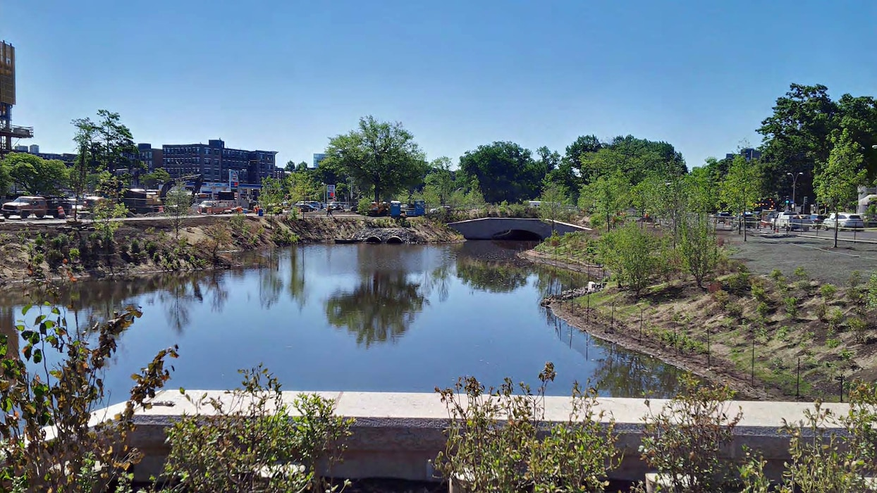 Brookline Avenue Culvert at the former Sears Parking Lot, with river diversion sheeting removed and plantings on the banks of the constructed FRM channel.