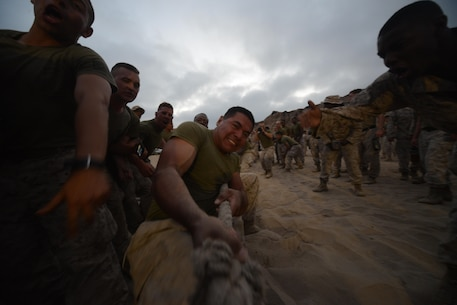 Marines with 1st Light Armored Reconnaissance Battalion cheer and motivate the Marines participating in a tug-of-war challenge during the battalion's annual Highlander Night aboard Marine Corps Base Camp Pendleton, Calif., June 30, 2016.  The competitions tighten the bonds of brotherhood and build esprit corps as units work together in head to head competitions. (U.S. Marine Corps photo by Lance Cpl. Timothy Valero/ Released)