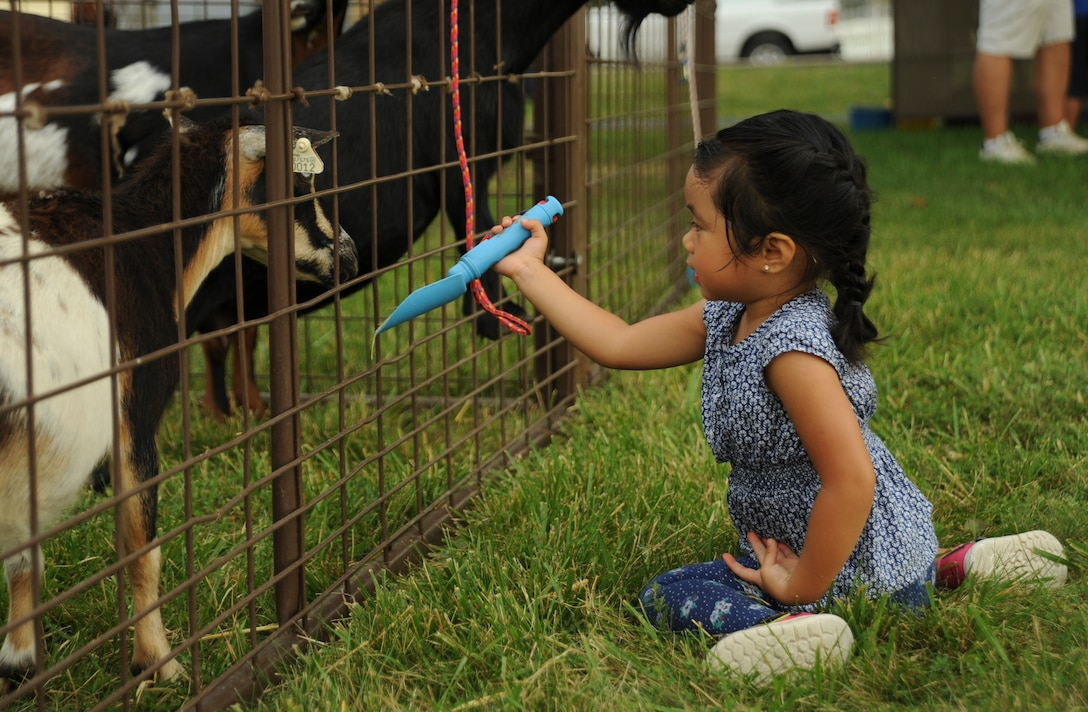 Meredith, daughter of Tech Sgt. Jaime Conui who is assigned to the 509th Maintenance Squadron, offers food to a goat during the Independence Day Celebration at Whiteman Air Force Base, Mo., June 30, 2016. Youth had the opportunity to get up close to farm animals, walk through a bird exhibit and ride a pony at the event. (U.S. Air Force photo by Senior Airman Danielle Quilla)