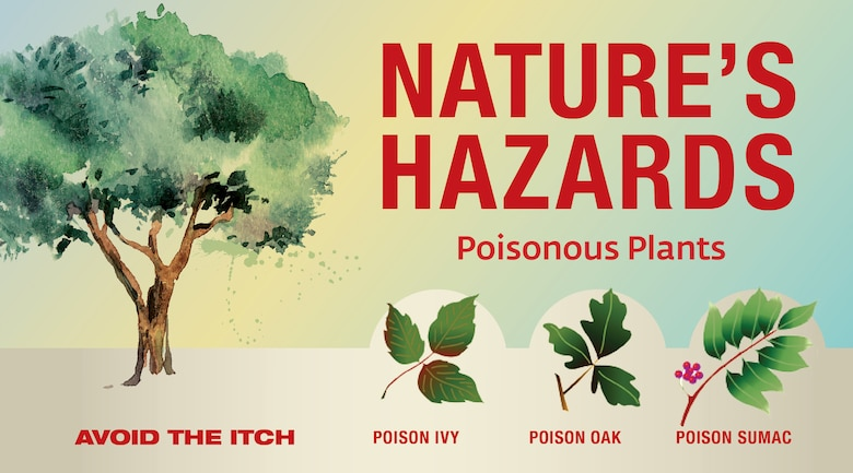 Nature's Hazards Web Banner