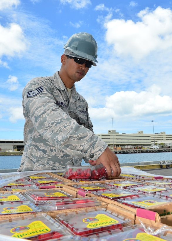 Staff Sgt. Renato Sambilay, 15th Aerospace Medicine Squadron bioenvironmental technician, inspects a pallet of food prior to delivery to the USS John C. Stennis (CVN-74) on Joint Base Pearl Harbor-Hickam, July 15 2016. Airmen from the 15th Aerospace Medicine Squadron are working alongside Soldiers from the Public Heath Command District Central Pacific Hawaii to ensure food is safely delivered to service members aboard 33 military vessels during the 2016 Rim of the Pacific Exercise. Twenty-six nations, more than 40 ships and submarines, 200 aircraft, and 25,000 personnel are participating in RIMPAC from June 30 to Aug. 4, in and around the Hawaiian Islands and Southern California. The world's largest international maritime exercise, RIMPAC provides a unique training opportunity that helps participants foster and sustain the cooperative relationships that are critical to ensuring the safety of sea lanes and security on the world's oceans. (U.S. Air Force photo by Tech. Sgt. Aaron Oelrich/Released)