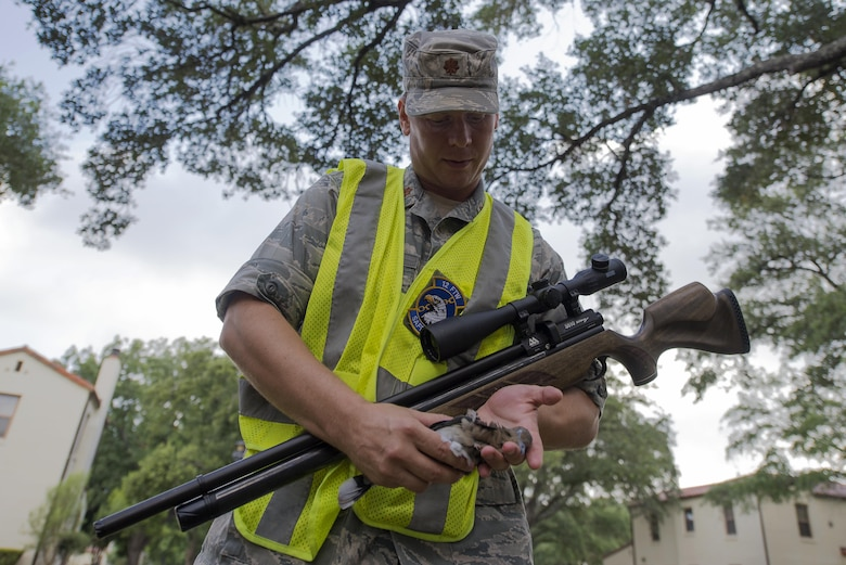 Maj. Jason Powell, 12th Flying Training Wing chief of flight safety, gathers a white-winged dove after striking it with the air pellet rifle July 13, 2016 at Joint Base San Antonio-Randolph. The Bird/Wildlife Aircraft Strike Hazard Program reduces the threat that the nearly 400 different species of birds pose each year as they travel along the Central Americas Flyway.