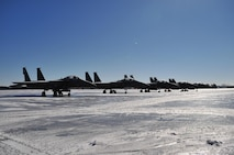 Five F-15E Strike Eagles sit on the frozen transient alert ramp at Seymour Johnson Air Force Base, N.C. Jan. 31, 2010. Snow plows and salt trucks were not used because Airfield Management and the 4th Logistics Readiness Squadron commander wanted to see if the snow and ice would melt on its own. (U.S. Air Force photo/Senior Airman Rae Perry)